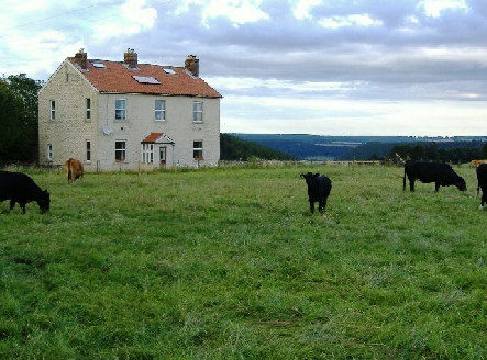 South Moor Farm - Quiet rural location.